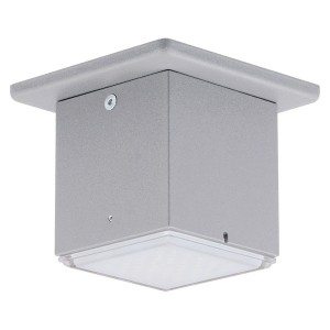 1L LED Outdoor Ceiling Light - 3.7 W - Wall Luminaire