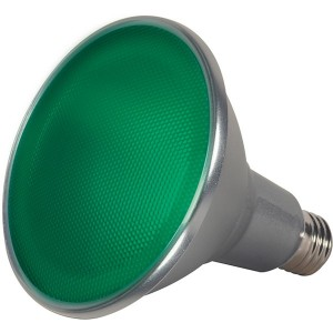 LED PAR38 Colour- 15W - Green