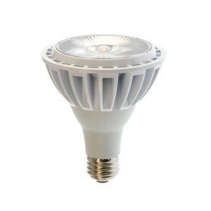 LED PAR30 - 13W - 5000K Cool White
